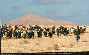 4-Paisajes ganaderos